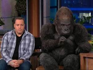 Kevin James and Bernie the Gorilla Argue on 'The Tonight ...