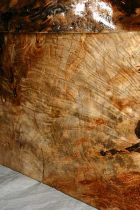tips  working  spalted maple woodworking talk