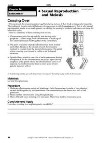 cross lesson plans worksheets reviewed by teachers