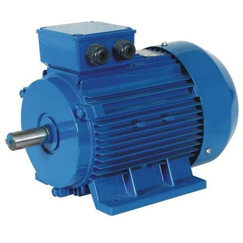 Motoare Trifazice by Industrial Motor Max Flow Rate 1400 Rpm Rs 3000