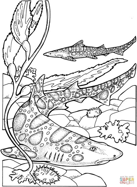 Sky Leopard Coloring Sheets Free To Print Gulfmik