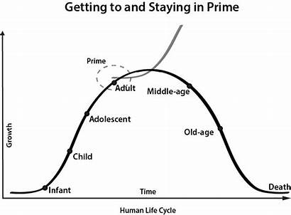 Cycle Human Cycles Prime Stay Journey Organizational
