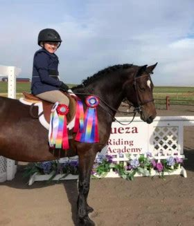 Brave Horse Show home page