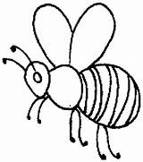 Bee Outline Honey Coloring Pages Beehive Drawing Clip Bees Hive Printable Getdrawings Getcolorings Sheet Coloringsky Insects Sky sketch template