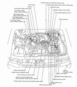 1998 Nissan Pathfinder Engine Diagram