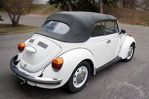Food Music Life   1973 Vw Super Beetle