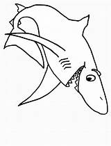 Shark Sharks Coloring Pages sketch template