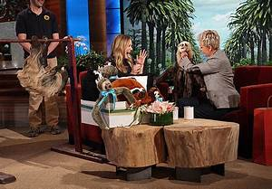 Kristen Bell's Baby Sloth Costume | The Best Baby Shower ...