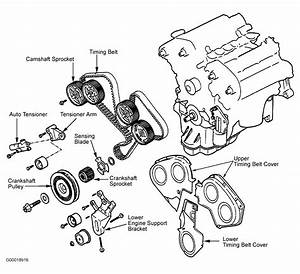 2004 Hyundai Santa Fe Serpentine Belt Routing And Timing