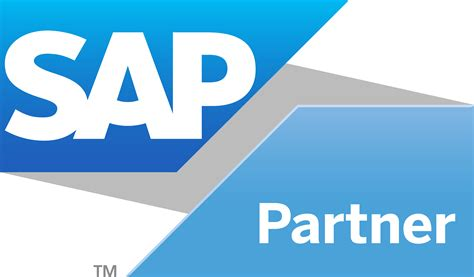 sap programming and sap consulting