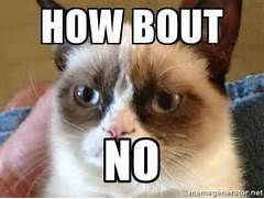 Angry Cat Meme - How b...