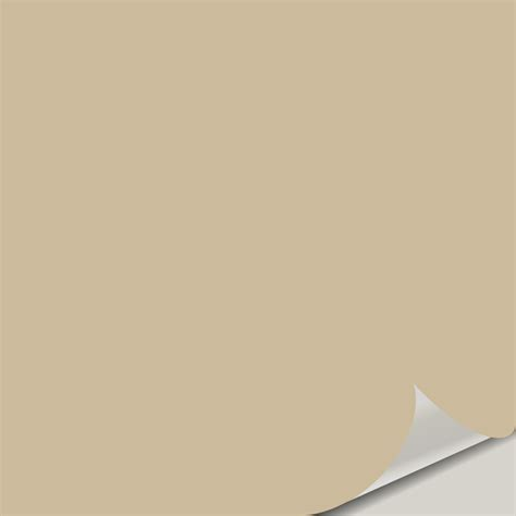 color scheme for macadamia sw 6142