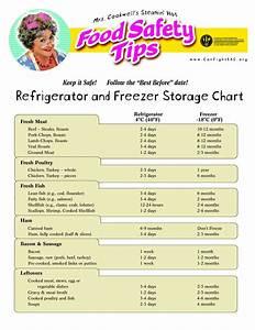 Fridge Temperature Chart Temperature Chart Template Food Storage Temperature
