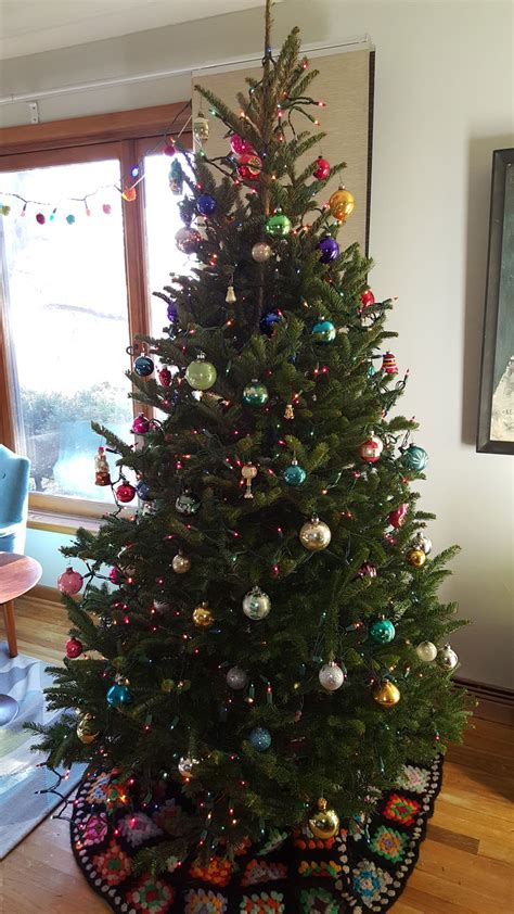 cost of christmas trees at orchard hardware wildfires lead to low supply higher prices for trees radio iowa