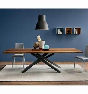 Table Sejour Design : table sejour table de salle a manger design avec rallonge maisonjoffrois ~ Teatrodelosmanantiales.com Idées de Décoration
