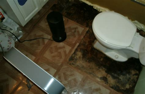 Replace Or Dry It Out Damp Plywood Floor Due To Slow