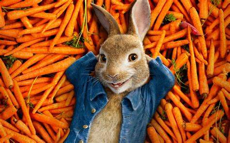 Cars , space , league of legends , black. Peter Rabbit 2018 Animation 4K Wallpapers   HD Wallpapers   ID #22368