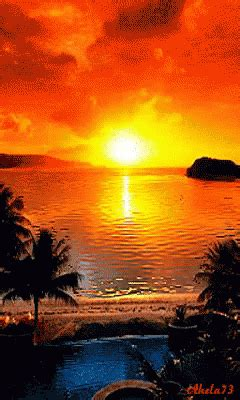 sun set gif sun set reflection discover share gifs