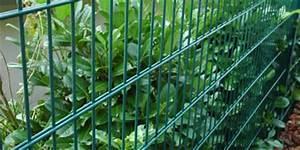 Wer Zahlt Zaun Zwischen Zwei Grundstücken : z une aus drahtgitter zu g nstigen preisen kaufen ~ Whattoseeinmadrid.com Haus und Dekorationen