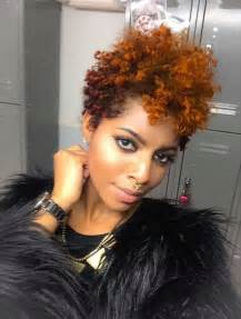 Short Natural Hairstyles Black Women 2017