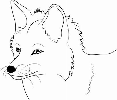 Fox Coloring Pages Face Printable Colouring Outline