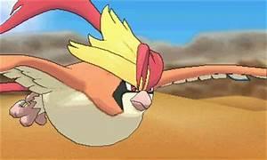 Mega Pidgeot New Mega Evolutions Poku00e9mon Omega Ruby