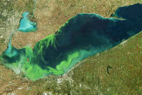 unseen  green lake erie   health