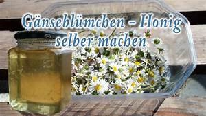 Honig Selber Machen : g nsebl mchen honig selber machen ohne bienen youtube ~ A.2002-acura-tl-radio.info Haus und Dekorationen