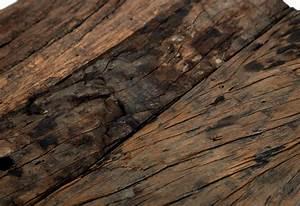 Couchtisch Holz Treibholz Gt Inspirierendes