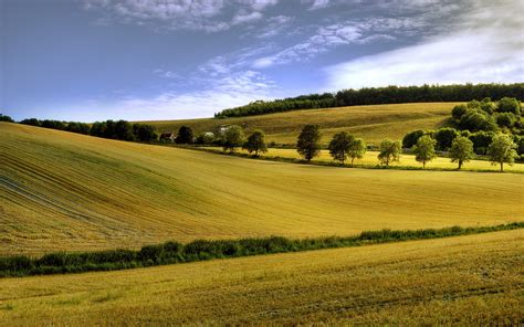 Smoothed Fields  1920 X 1200  Nature Photography