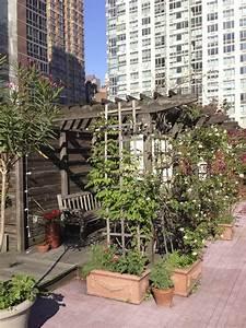 Urban Gardening  The Ultimate Guide To City Gardening