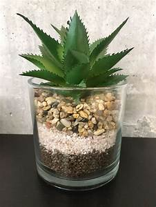 Sukkulenten Im Glas : sukkulenten im glas kunstblume kaufen auf ~ Watch28wear.com Haus und Dekorationen