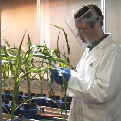 Plant Biologist | AgExplorer