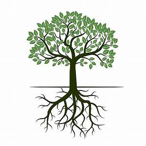 Roots clipart tree illustration - Pencil and in color ...