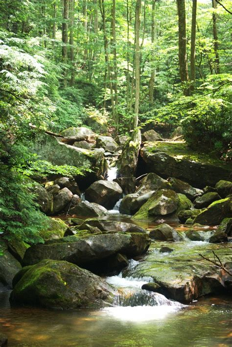 On a hike to Leatherwood Falls - Bergoo, WV | Mother ...