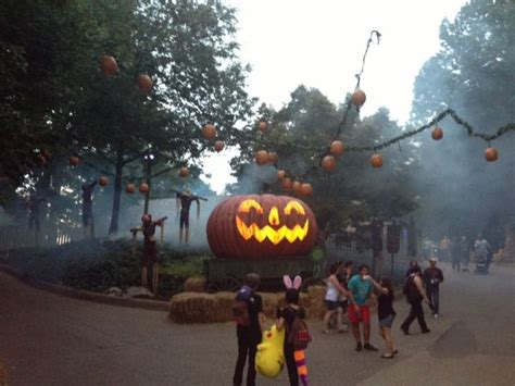 Halloween Busch Gardens Va by 1000 Images About Howl O Scream On Pinterest