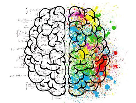 Brain Mind Psychology · Free Photo On Pixabay