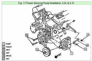 I Need Some Pictures Or Diagrams Of How The Alternator And