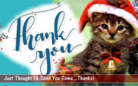 cute kitten   card    ecards
