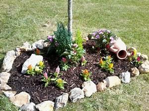 Parterre De Fleur Avec Cailloux : parterre avec cailloux fleurs photo 2 10 parterre ~ Melissatoandfro.com Idées de Décoration