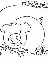 Pig Coloring Funny Cartoon Mitraland sketch template