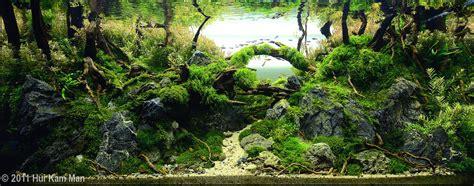 Aquascape Forest - aquascape exles aquascapers