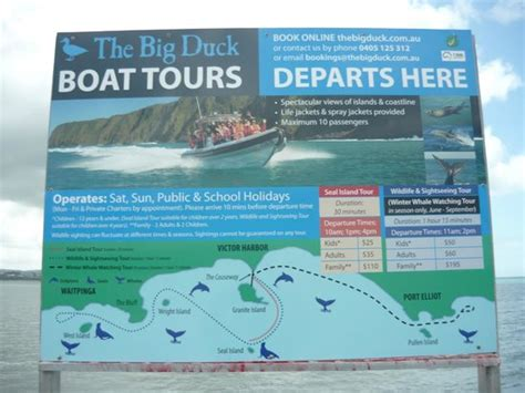 Big Duck Boat Victor Harbor by Prices Of Tours Picture Of The Big Duck Boat Tours