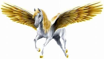 Pegasus Horse Transparent Purepng Winged Creatures