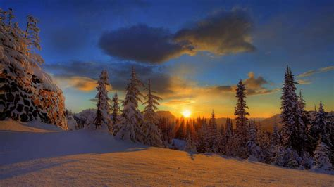 Snow Painted By The Sun Hd Wallpaper » Fullhdwpp  Full Hd