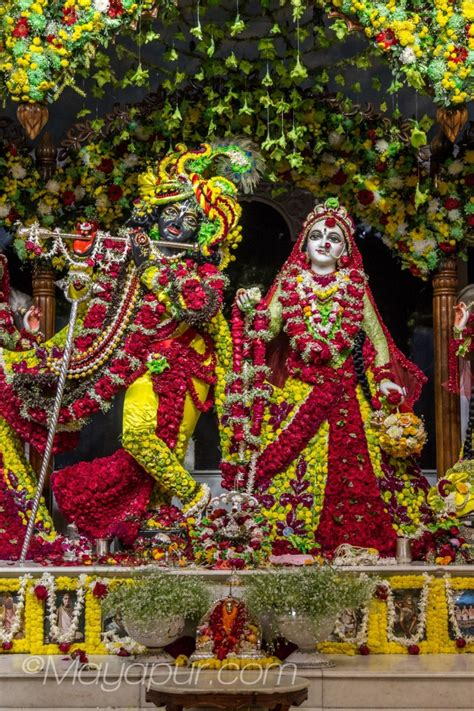 sri radha madhava flower outfits darshan mayapurcom