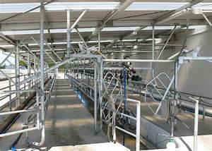 Herringbone Milking Systems
