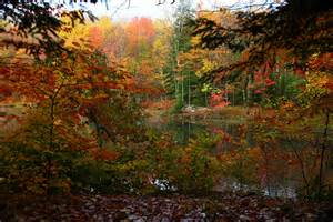 fall colors in virginia where s the best place to see fall foliage in wv west