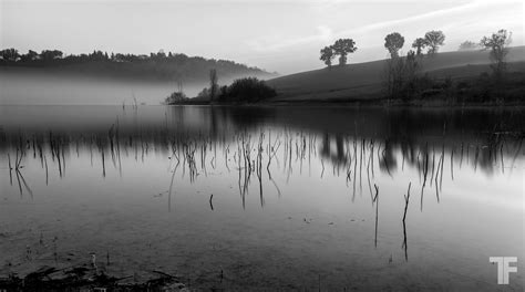 Black And White by Foggy Lake Landscape Black And White Gallery Portfolio