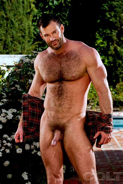 Gay Muscle Bear Xxx